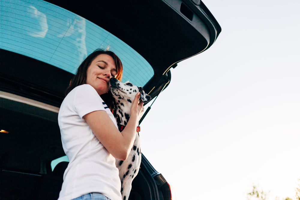 cheerful woman sitting in back of PAWZ pet taxi car with dog watching sunset from window enjoying travel. Pet Taxi App offers Pet Transportation and Delivery Service for Groomers, Dog Daycares, Veterinarians, and Busy Pet Owners.